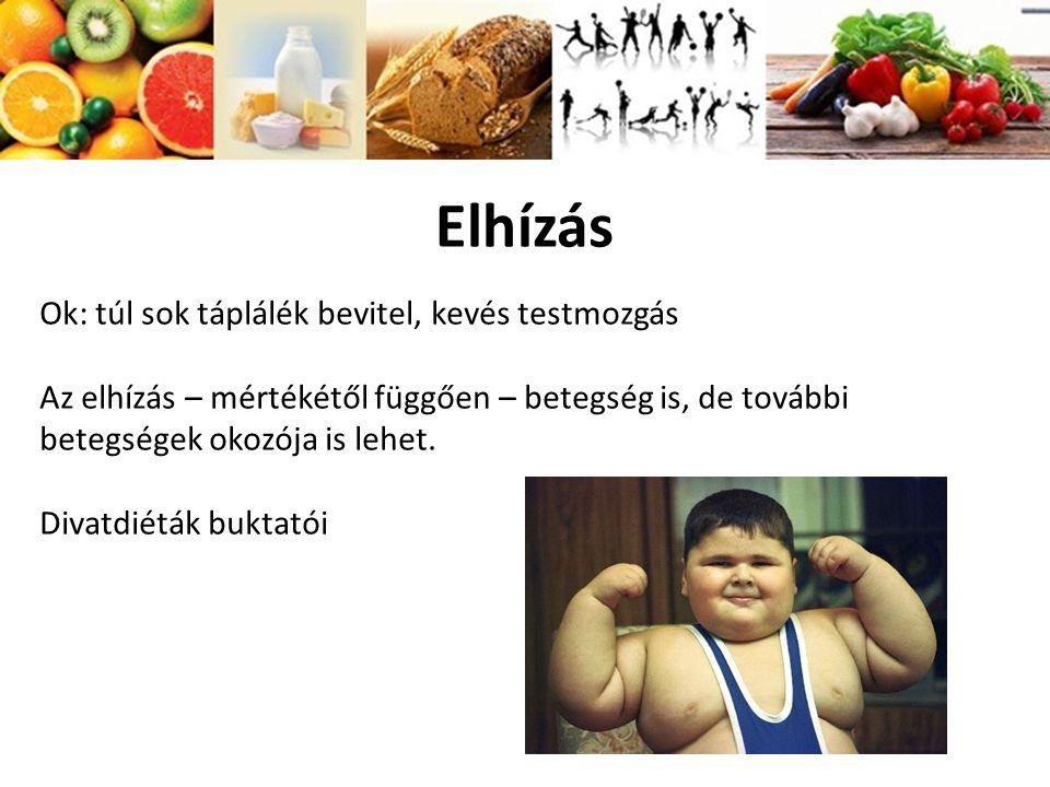 Elhízás Ok: túl sok táplálék bevitel, kevés testmozgás Az elhízás – mértékétől függően – betegség is, de további betegségek okozója is lehet. Divatdié