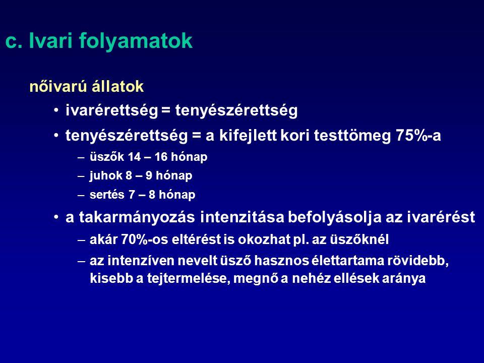 c. Ivari folyamatok nőivarú állatok ivarérettség = tenyészérettség tenyészérettség = a kifejlett kori testtömeg 75%-a –üszők 14 – 16 hónap –juhok 8 –