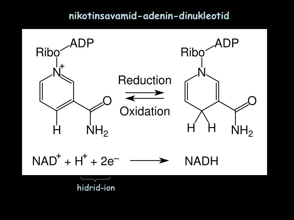 nikotinsavamid-adenin-dinukleotid hidrid-ion