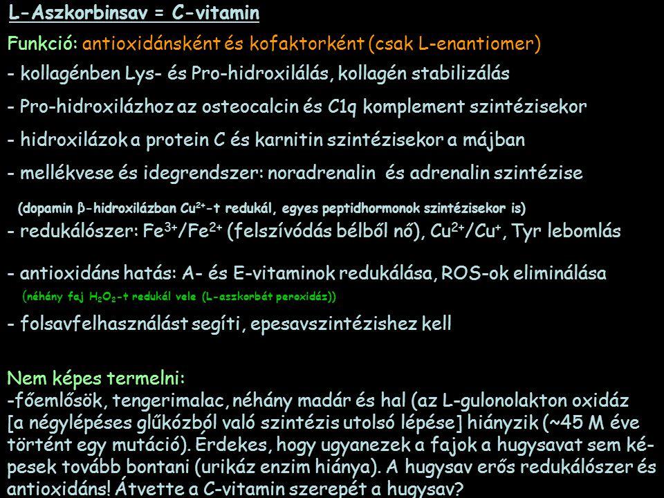 L-Aszkorbinsav = C-vitamin Funkció: antioxidánsként és kofaktorként (csak L-enantiomer) - kollagénben Lys- és Pro-hidroxilálás, kollagén stabilizálás