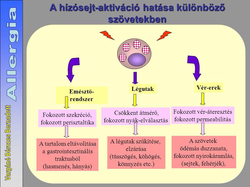 A hízósejt-aktiváció hatása különböző szövetekben Emésztő- rendszer Fokozott szekréció, fokozott perisztaltika A tartalom eltávolítása a gastrointesztinális traktusból (hasmenés, hányás) Vér-erek Fokozott vér-áteresztés fokozott permeabilitás A szövetek ödémás duzzanata, fokozott nyirokáramlás, (sejtek, fehérjék), Légutak Csökkent átmérő, fokozott nyák-elválasztás A légutak szűkítése, elzárása (tüsszögés, köhögés, könnyzés etc.)