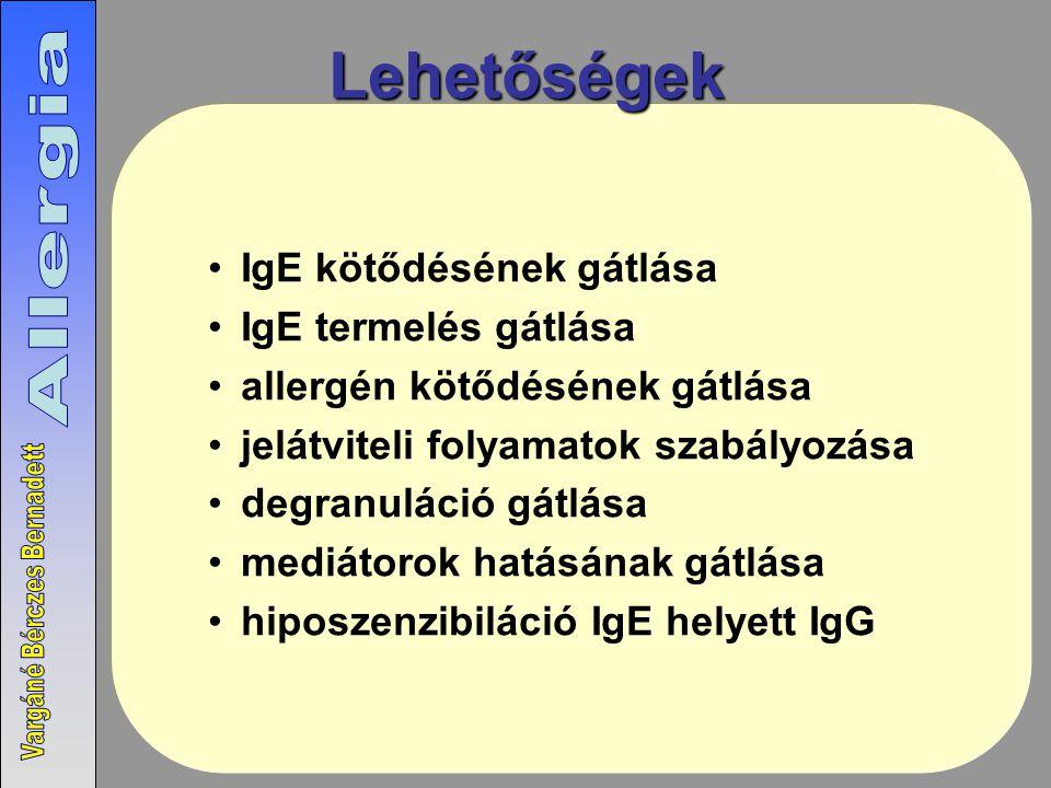 Lehetőségek IgE kötődésének gátlása IgE termelés gátlása allergén kötődésének gátlása jelátviteli folyamatok szabályozása degranuláció gátlása mediátorok hatásának gátlása hiposzenzibiláció IgE helyett IgG