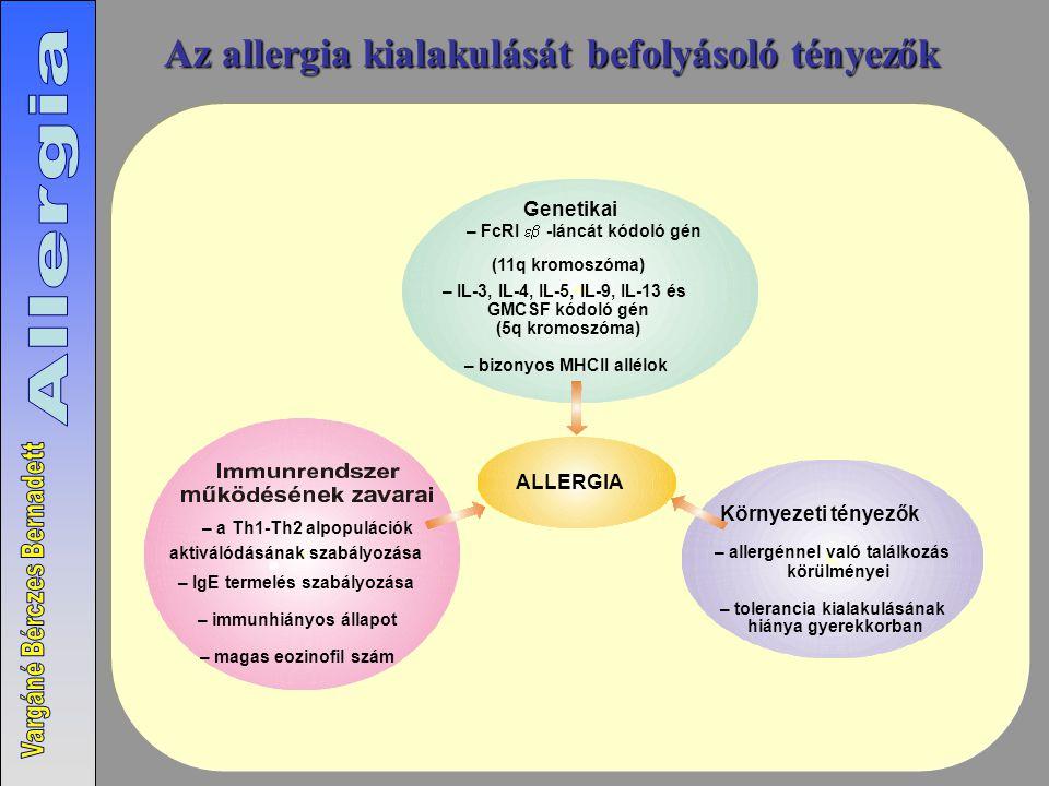 Az allergia kialakulását befolyásoló tényezők ALLERGIA (11q kromoszóma) – IL-3, IL-4, IL-5, IL-9, IL-13 és GMCSF kódoló gén (5q kromoszóma) – bizonyos MHCII allélok Genetikai Környezeti tényezők – a Th1-Th2 alpopulációk aktiválódásának szabályozása – IgE termelés szabályozása – immunhiányos állapot – magas eozinofil szám – allergénnel való találkozás körülményei – tolerancia kialakulásának hiánya gyerekkorban – FcRI  -láncát kódoló gén