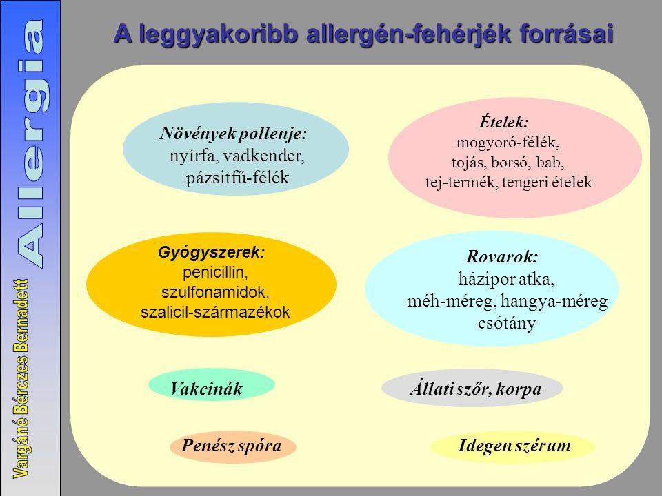 Gyógyszerek: penicillin, szulfonamidok, szalicil-származékok Idegen szérum Növények pollenje: nyírfa, vadkender, pázsitfű-félék Penész spóra Rovarok: házipor atka, méh-méreg, hangya-méreg csótány Ételek: mogyoró-félék, tojás, borsó, bab, tej-termék, tengeri ételek Állati szőr, korpaVakcinák A leggyakoribb allergén-fehérjék forrásai