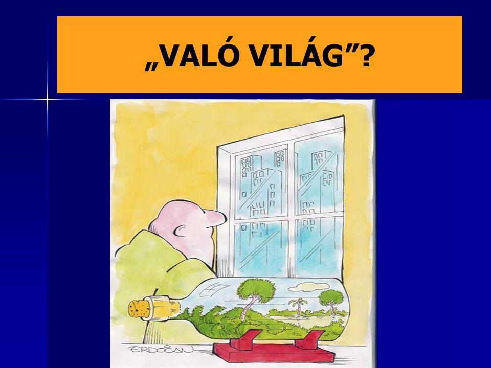 """""""VALÓ VILÁG"""