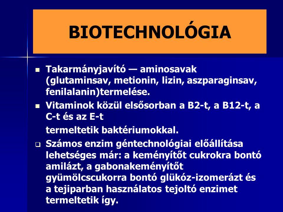 BIOTECHNOLÓGIA Takarmányjavító — aminosavak (glutaminsav, metionin, lizin, aszparaginsav, fenilalanin)termelése.