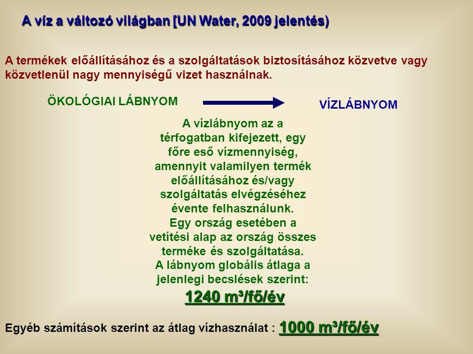 A víz a változó világban [UN Water, 2009 jelentés) A termékek előállításához és a szolgáltatások biztosításához közvetve vagy közvetlenül nagy mennyis