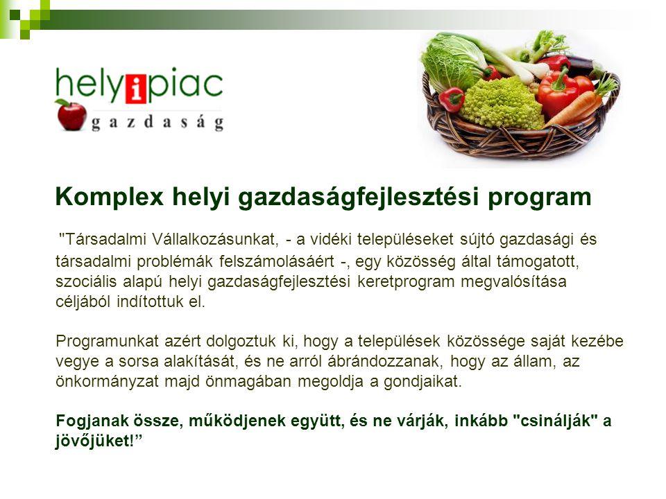 Komplex helyi gazdaságfejlesztési program