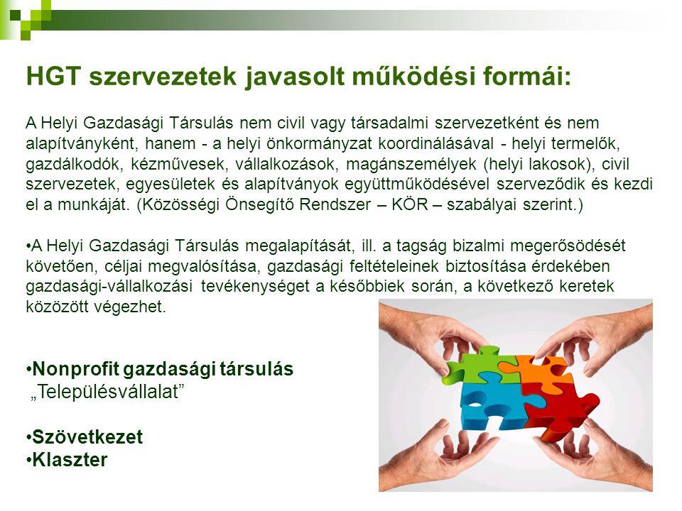 HGT szervezetek javasolt működési formái: A Helyi Gazdasági Társulás nem civil vagy társadalmi szervezetként és nem alapítványként, hanem - a helyi ön