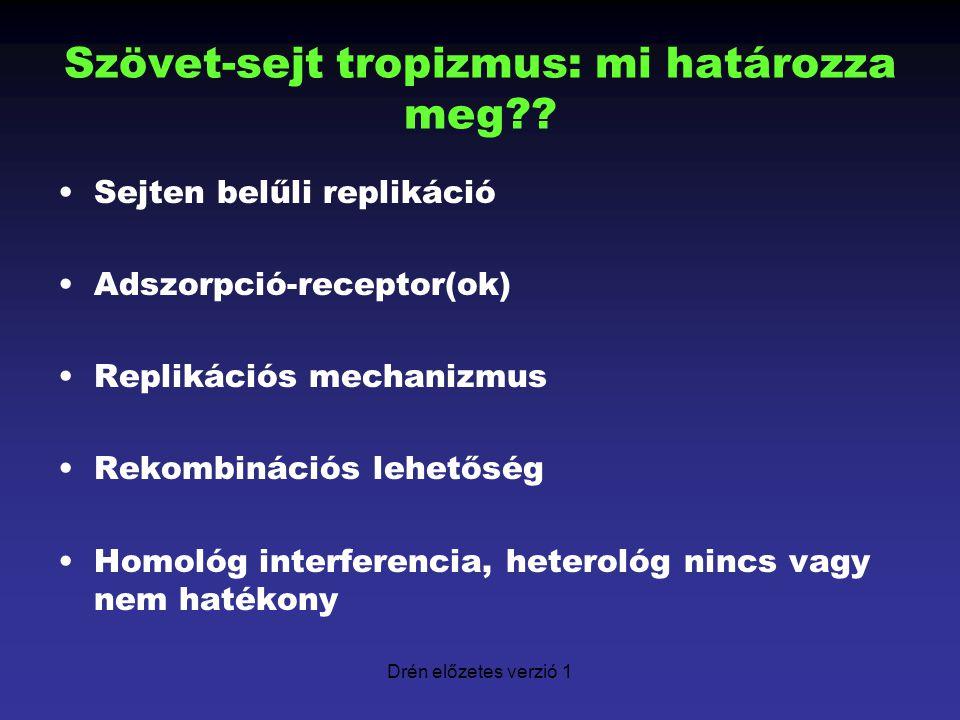 Drén előzetes verzió 1 Szövet-sejt tropizmus: mi határozza meg?? Sejten belűli replikáció Adszorpció-receptor(ok) Replikációs mechanizmus Rekombináció