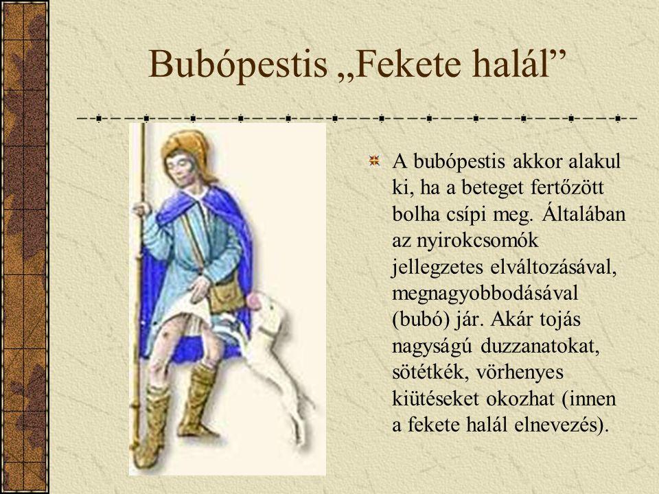"""Bubópestis """"Fekete halál"""" A bubópestis akkor alakul ki, ha a beteget fertőzött bolha csípi meg. Általában az nyirokcsomók jellegzetes elváltozásával,"""