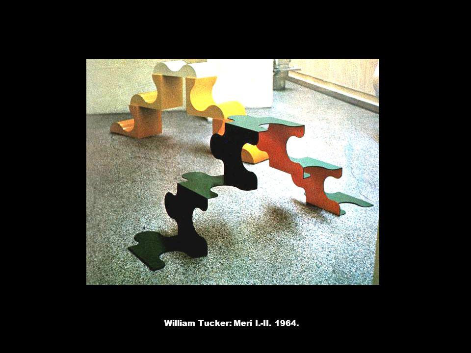 William Tucker: Meri I.-II. 1964.
