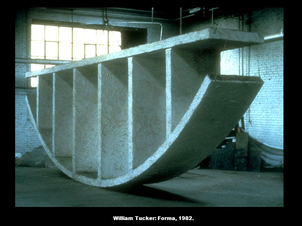 William Tucker: Forma, 1982.