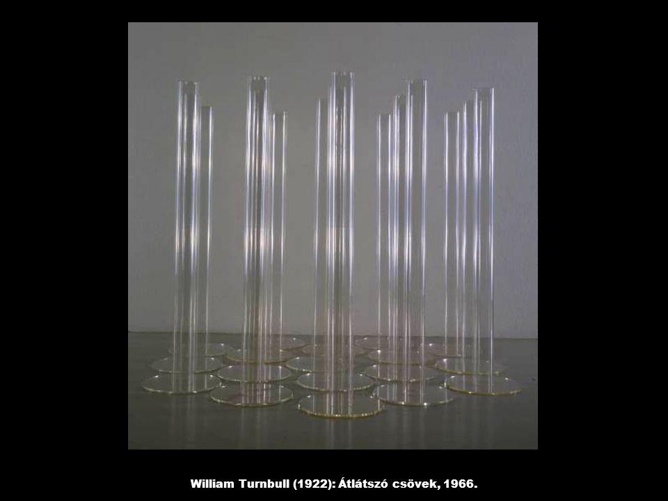William Turnbull (1922): Átlátszó csövek, 1966.