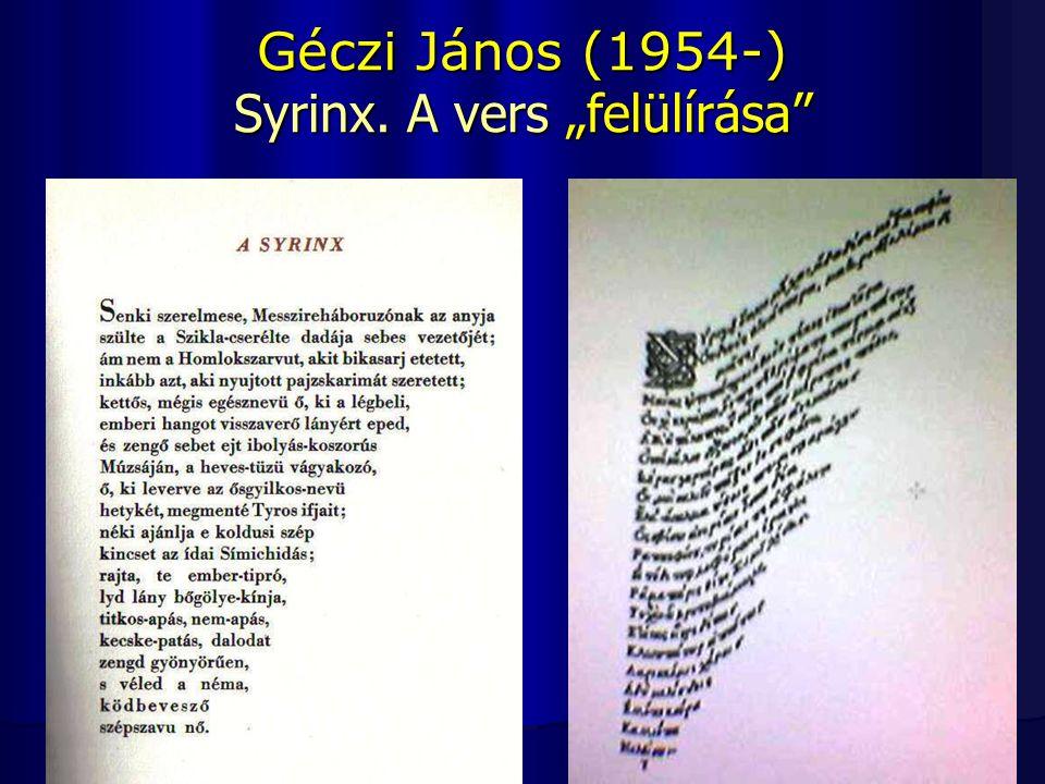 A vizuális költészet rendszerezése A statikus kétdimenziós művek rendezőelve lehet tycho-szintaktikus, ami a permutációt, a variálást teszi meg a vizuális költemény rendezőelvévé.