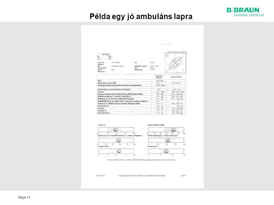 Page Példa egy jó ambuláns lapra 13