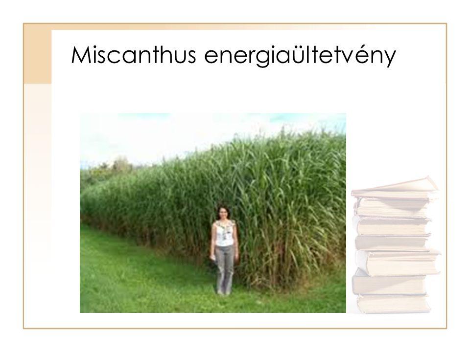 Energianyár