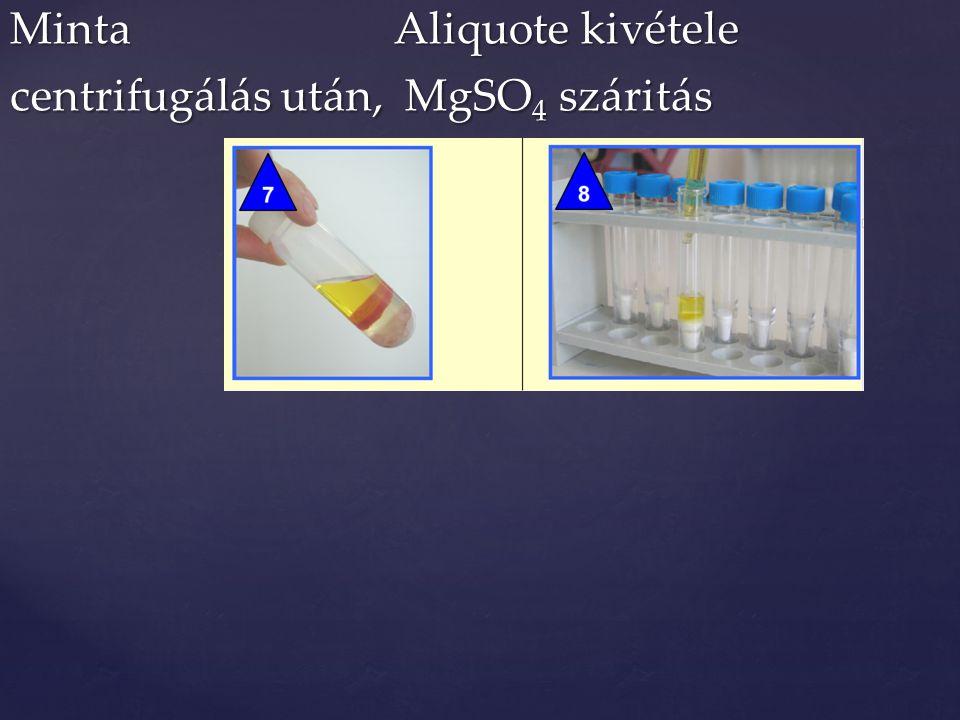 MintaAliquote kivétele centrifugálás után, MgSO 4 száritás