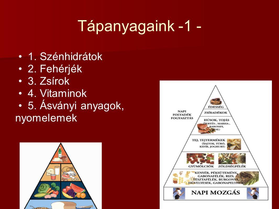 Tápanyagaink -1 - 1. Szénhidrátok 2. Fehérjék 3. Zsírok 4. Vitaminok 5. Ásványi anyagok, nyomelemek