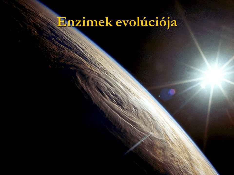 Enzimek evolúciója