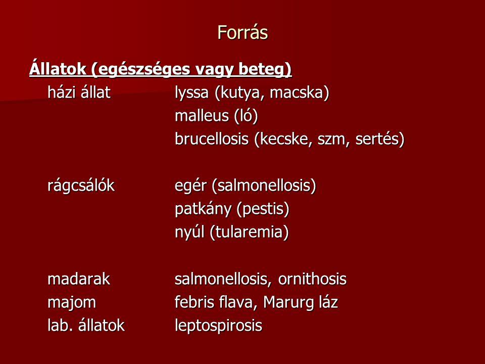 Forrás Állatok (egészséges vagy beteg) házi állatlyssa (kutya, macska) malleus (ló) brucellosis (kecske, szm, sertés) rágcsálókegér (salmonellosis) pa