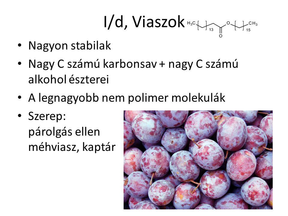 I/d, Viaszok Nagyon stabilak Nagy C számú karbonsav + nagy C számú alkohol észterei A legnagyobb nem polimer molekulák Szerep: párolgás ellen méhviasz, kaptár