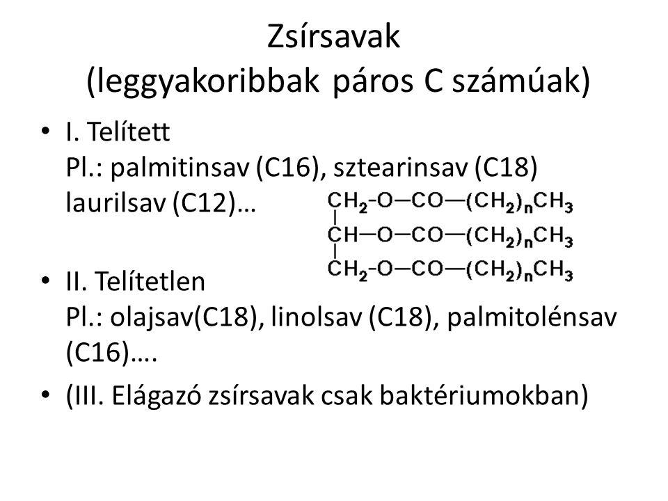 Zsírsavak (leggyakoribbak páros C számúak) I.