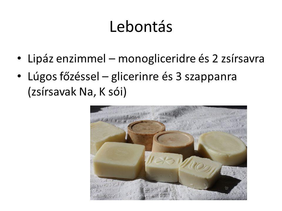 Lebontás Lipáz enzimmel – monogliceridre és 2 zsírsavra Lúgos főzéssel – glicerinre és 3 szappanra (zsírsavak Na, K sói)