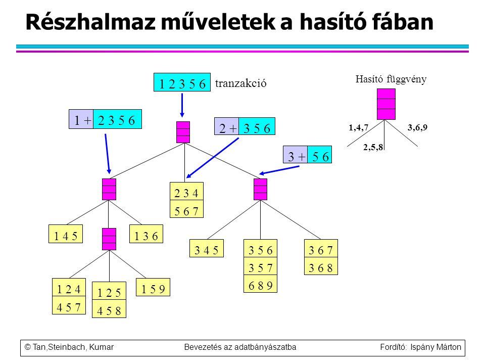 © Tan,Steinbach, Kumar Bevezetés az adatbányászatba Fordító: Ispány Márton Részhalmaz műveletek a hasító fában 1 5 9 1 4 51 3 6 3 4 53 6 7 3 6 8 3 5 6