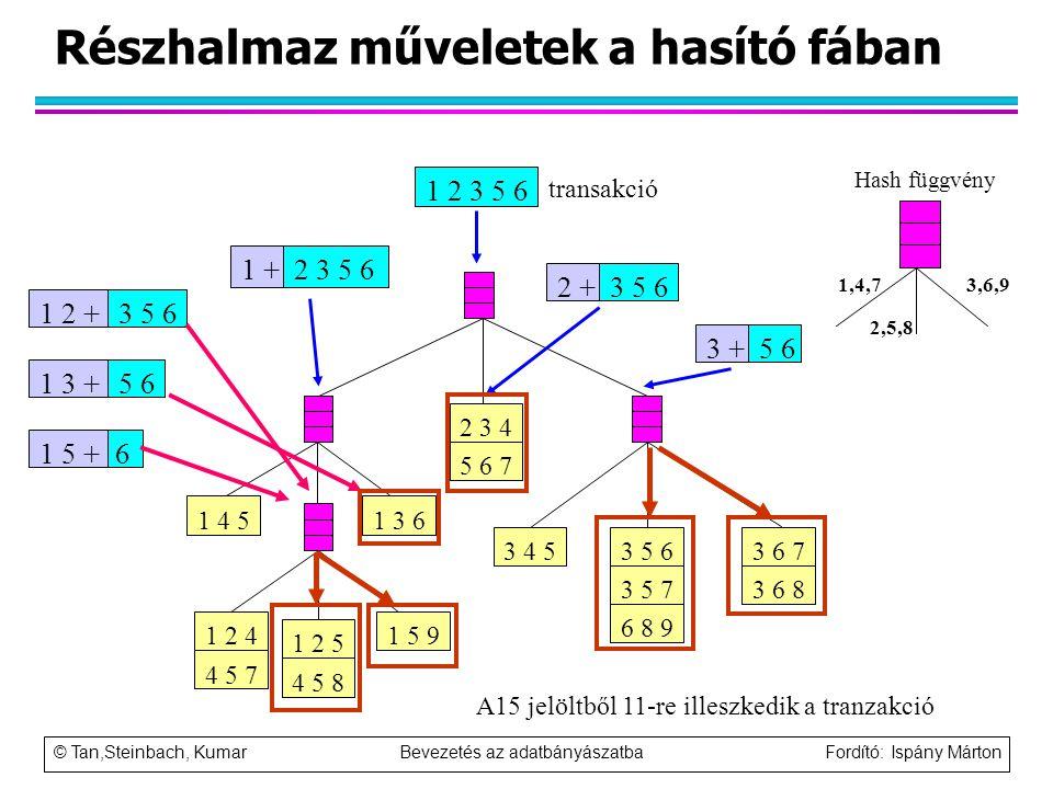 © Tan,Steinbach, Kumar Bevezetés az adatbányászatba Fordító: Ispány Márton Részhalmaz műveletek a hasító fában 1 5 9 1 4 5 1 3 6 3 4 5 3 6 7 3 6 8 3 5