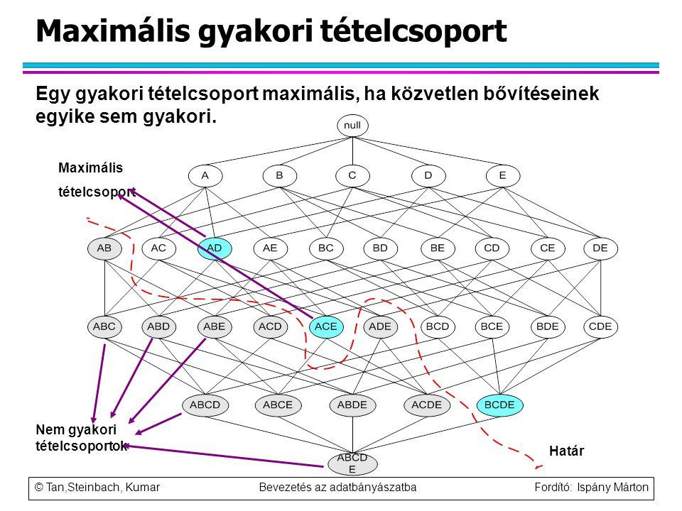 © Tan,Steinbach, Kumar Bevezetés az adatbányászatba Fordító: Ispány Márton Maximális gyakori tételcsoport Határ Nem gyakori tételcsoportok Maximális t