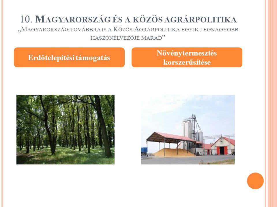 """10. M AGYARORSZÁG ÉS A KÖZÖS AGRÁRPOLITIKA """"M AGYARORSZÁG TOVÁBBRA IS A K ÖZÖS A GRÁRPOLITIKA EGYIK LEGNAGYOBB HASZONÉLVEZŐJE MARAD """" Erdőtelepítési t"""