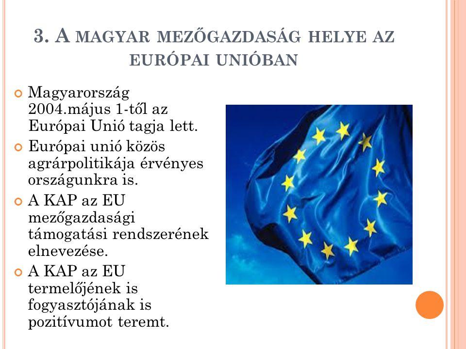 3. A MAGYAR MEZŐGAZDASÁG HELYE AZ EURÓPAI UNIÓBAN Magyarország 2004.május 1-től az Európai Unió tagja lett. Európai unió közös agrárpolitikája érvénye