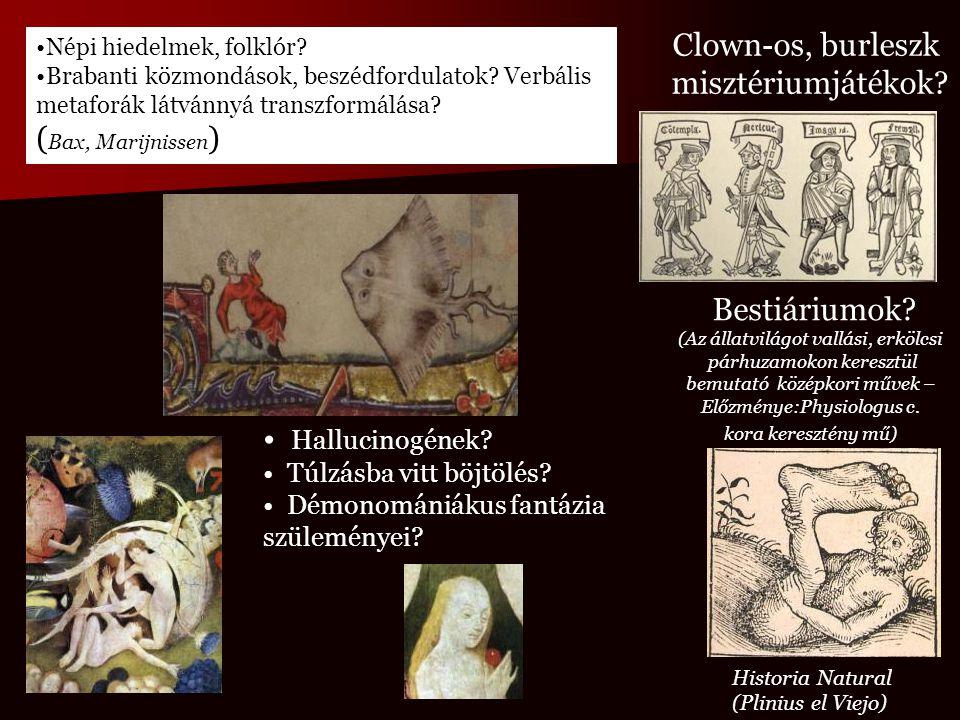 Népi hiedelmek, folklór? Brabanti közmondások, beszédfordulatok? Verbális metaforák látvánnyá transzformálása? ( Bax, Marijnissen ) Bestiáriumok? (Az