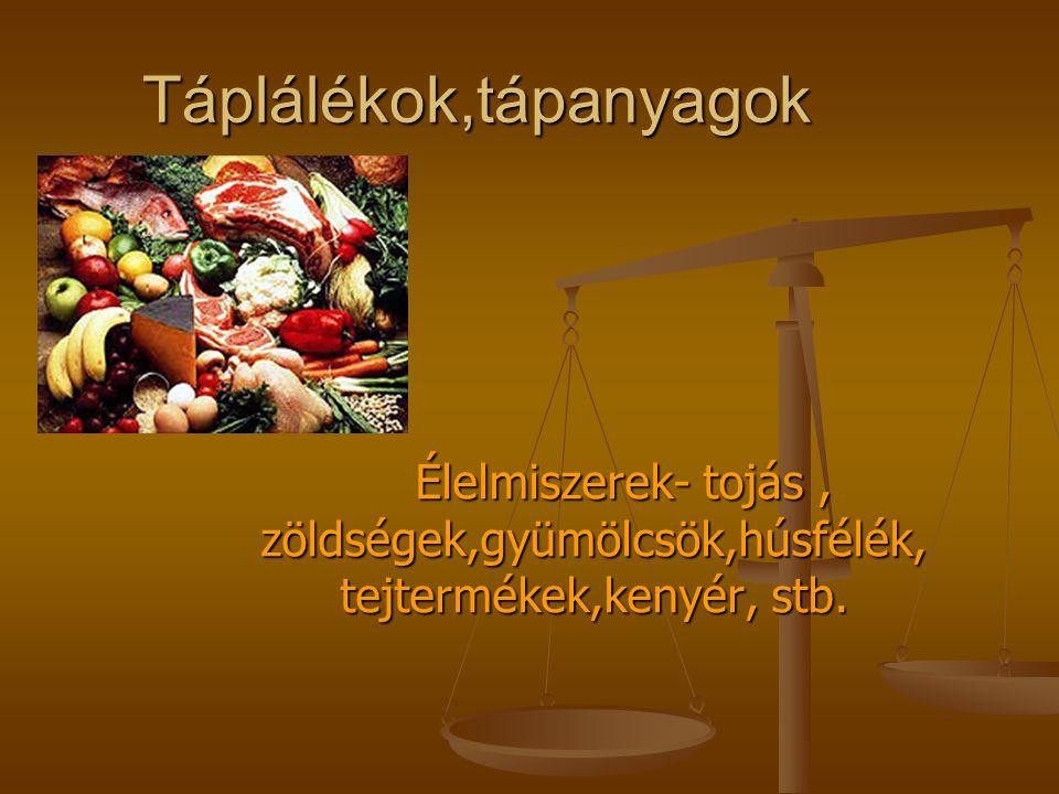 Táplálékok,tápanyagok Élelmiszerek- tojás, zöldségek,gyümölcsök,húsfélék, tejtermékek,kenyér, stb. Élelmiszerek- tojás, zöldségek,gyümölcsök,húsfélék,