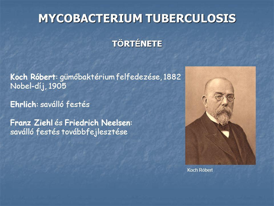 MYCOBACTERIUM TUBERCULOSIS T Ö RT É NETE Koch Róbert: gümőbaktérium felfedezése, 1882 Nobel-díj, 1905 Ehrlich: saválló festés Franz Ziehl és Friedrich