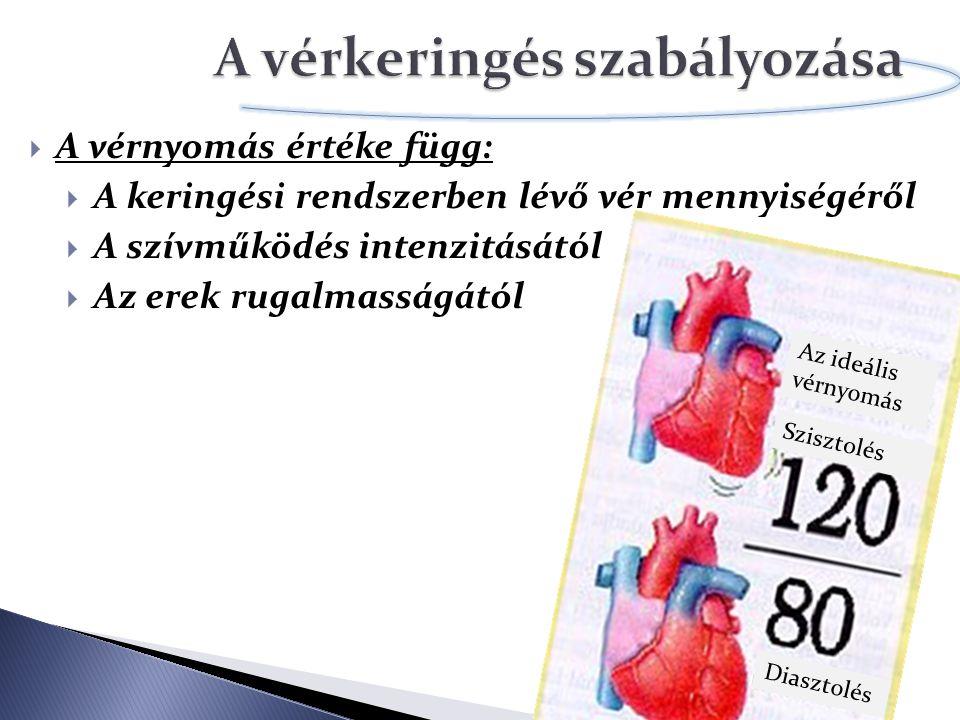  A vérnyomás értéke függ:  A keringési rendszerben lévő vér mennyiségéről  A szívműködés intenzitásától  Az erek rugalmasságától Szisztolés Diaszt