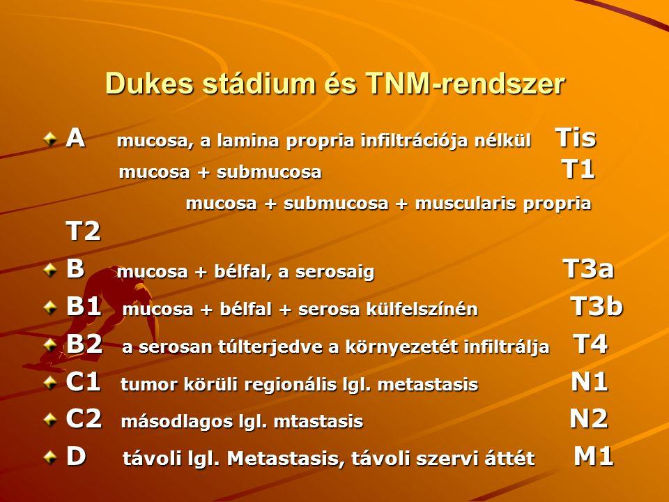 Dukes stádium és TNM-rendszer A mucosa, a lamina propria infiltrációja nélkül Tis mucosa + submucosa T1 mucosa + submucosa + muscularis propria T2 B m
