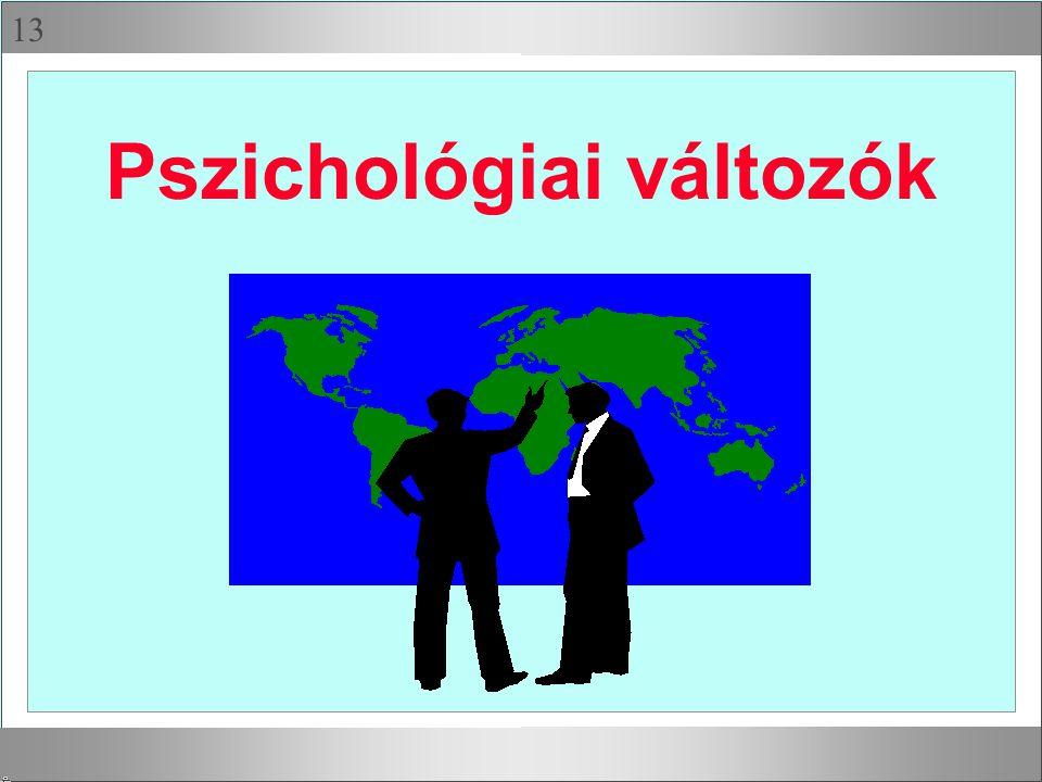 13 Pszichológiai változók