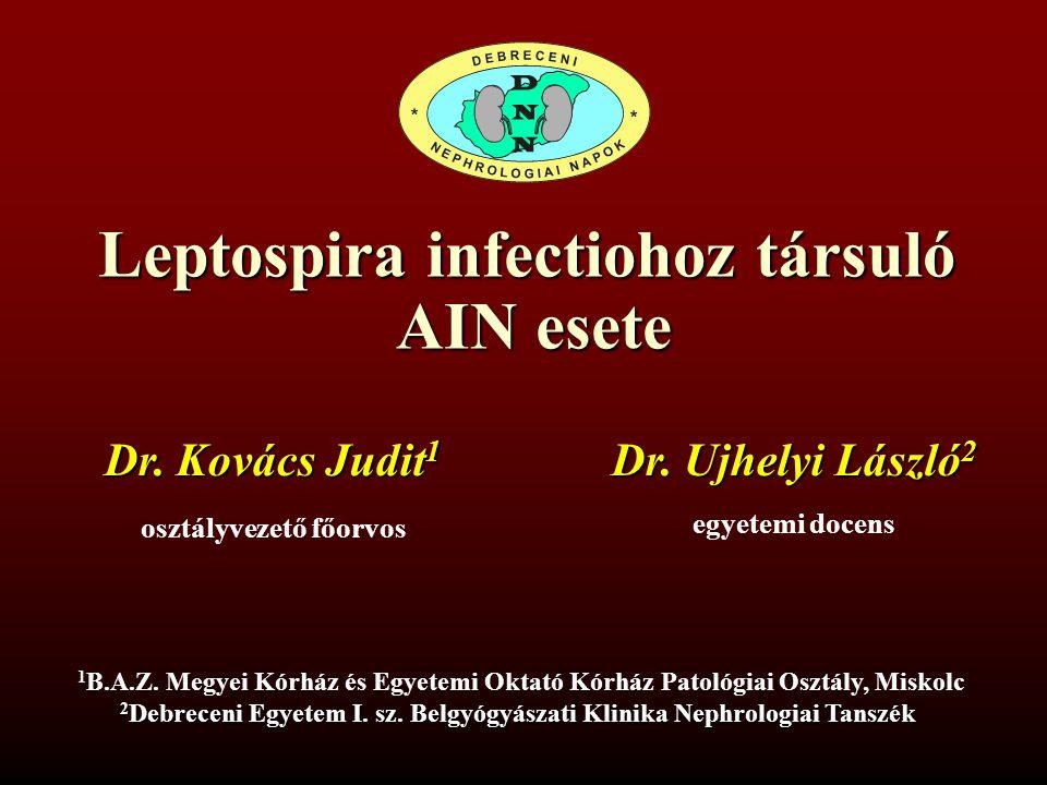 Leptospira infectiohoz társuló AIN esete AIN esete Dr. Ujhelyi László 2 egyetemi docens 1 B.A.Z. Megyei Kórház és Egyetemi Oktató Kórház Patológiai Os