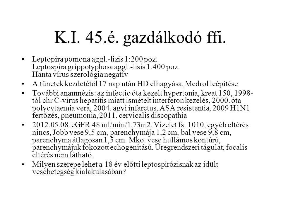 K.I. 45.é. gazdálkodó ffi. Leptopira pomona aggl.-lizis 1:200 poz. Leptospira grippotyphosa aggl.-lisis 1:400 poz. Hanta vírus szerológia negatív A tü