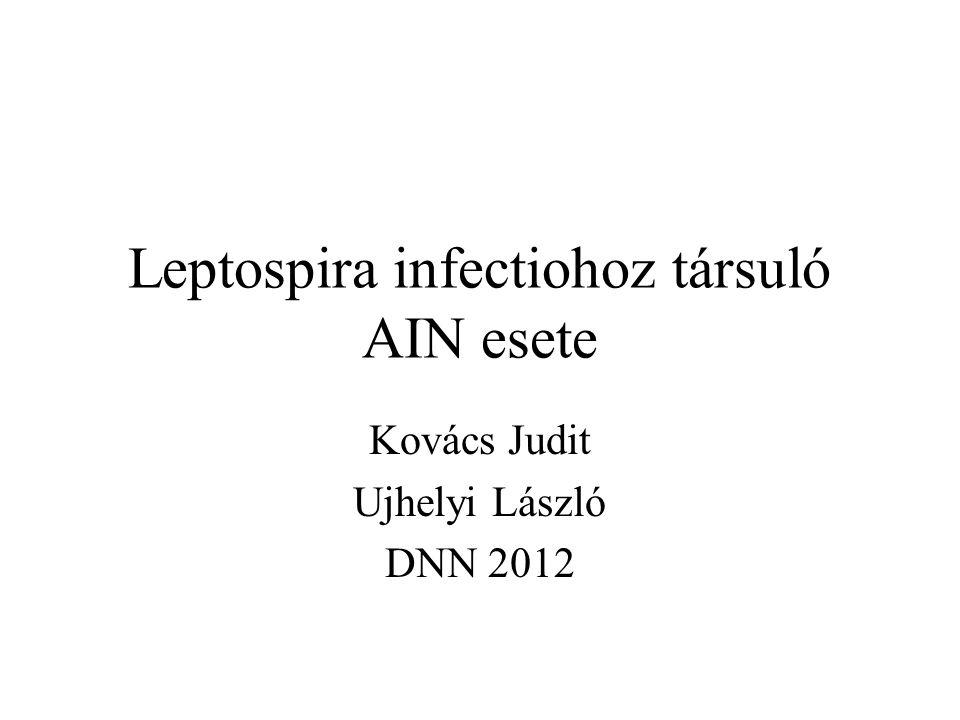 Leptospira infectiohoz társuló AIN esete Kovács Judit Ujhelyi László DNN 2012