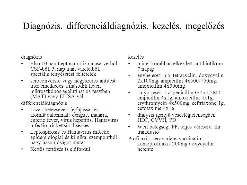 Diagnózis, differenciáldiagnózis, kezelés, megelőzés diagnózis Első 10 nap Leptospira izolálása vérből CSF-ből, 5. nap után vizeletből, speciális teny