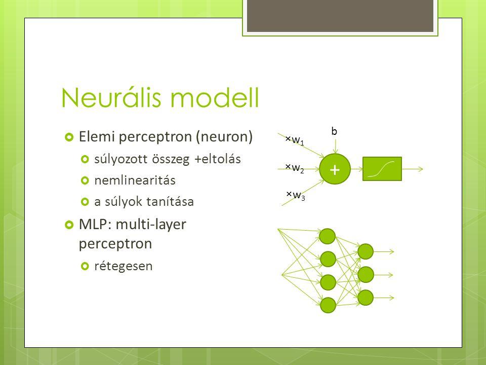 Neurális modell  Elemi perceptron (neuron)  súlyozott összeg +eltolás  nemlinearitás  a súlyok tanítása  MLP: multi-layer perceptron  rétegesen + ×w 1 ×w 2 ×w 3 b