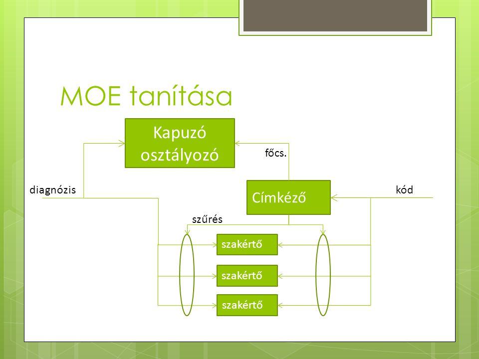 MOE tanítása Kapuzó osztályozó Címkéző kód főcs. diagnózis szűrés szakértő