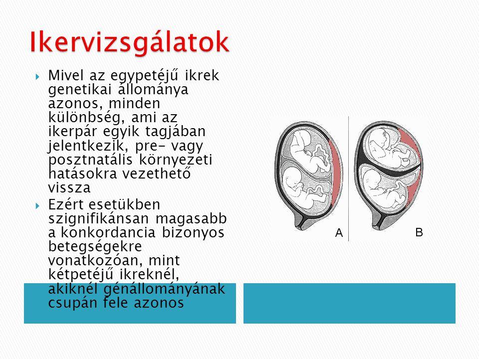  Mivel az egypetéjű ikrek genetikai állománya azonos, minden különbség, ami az ikerpár egyik tagjában jelentkezik, pre- vagy posztnatális környezeti