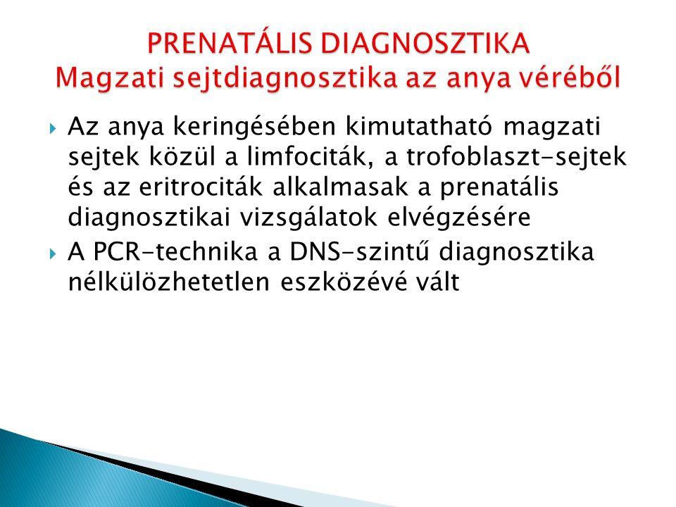  Az anya keringésében kimutatható magzati sejtek közül a limfociták, a trofoblaszt-sejtek és az eritrociták alkalmasak a prenatális diagnosztikai viz