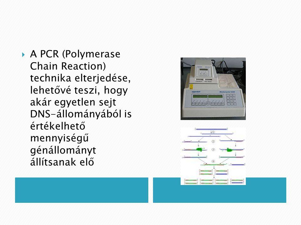  A PCR (Polymerase Chain Reaction) technika elterjedése, lehetővé teszi, hogy akár egyetlen sejt DNS-állományából is értékelhető mennyiségű génállomá