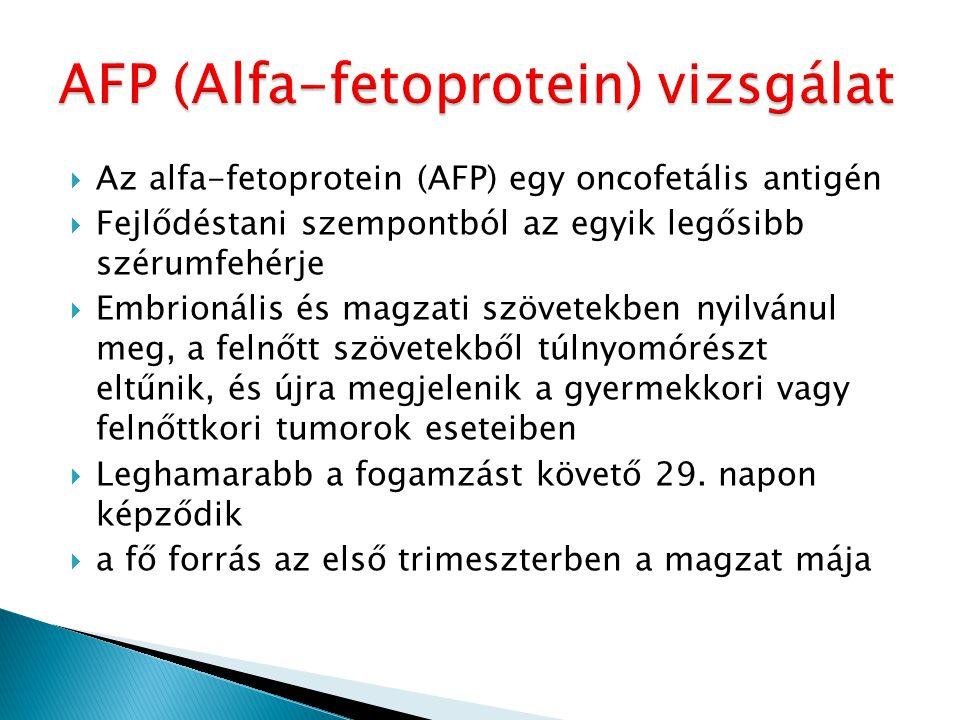  Az alfa-fetoprotein (AFP) egy oncofetális antigén  Fejlődéstani szempontból az egyik legősibb szérumfehérje  Embrionális és magzati szövetekben ny