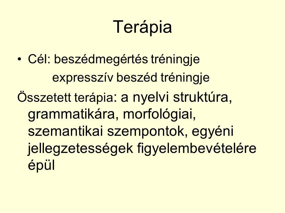 Terápia Cél: beszédmegértés tréningje expresszív beszéd tréningje Összetett terápia : a nyelvi struktúra, grammatikára, morfológiai, szemantikai szemp